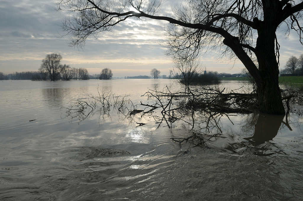 Nature picture:  / IJssel /