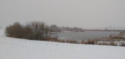Nature picture:  / Sneeuwstorm /