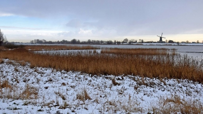 Nature picture:  / Winterse Lek /