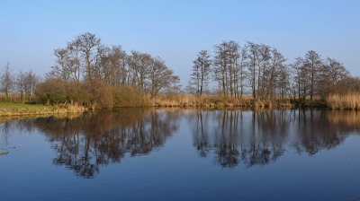 Nature picture:  / Weerschijn in Berkenwoudse Boezem /