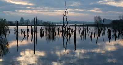 Nature picture: 2. De Alde Faenen 2