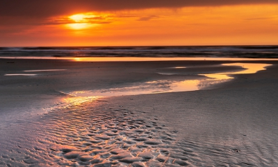 Nature picture:  / Strand Terschelling /
